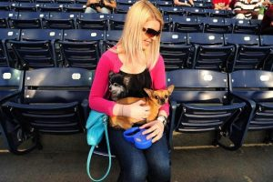 Events this week: Bark in the Park, live music and more